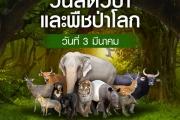 วันสัตว์ป่าและพืชป่าโลก (World Wildlife Day)